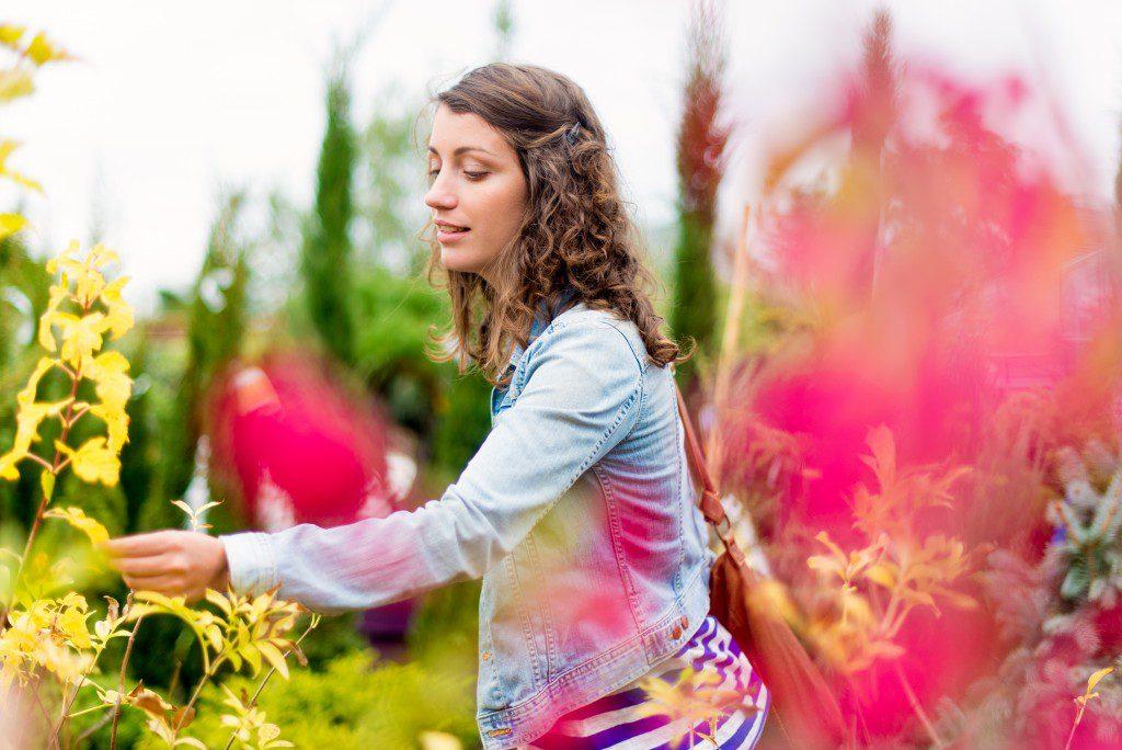 Amaya Happy Plantes