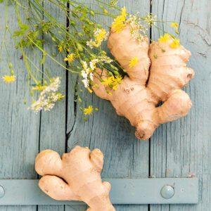 Invitez le gingembre dans vos tasses pour votre immunité !