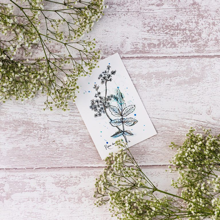carte postale reine-des-prés