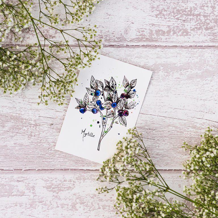 carte postale myrtille